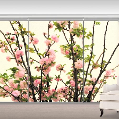 NL0680  - 꽃