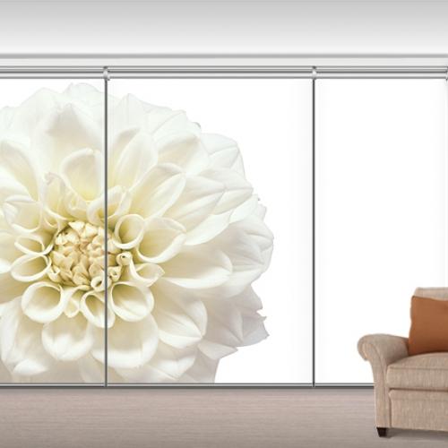 NL1620 - White Flower