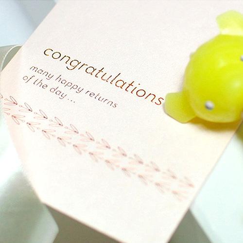마음을 전하는 봉투-축하합니다