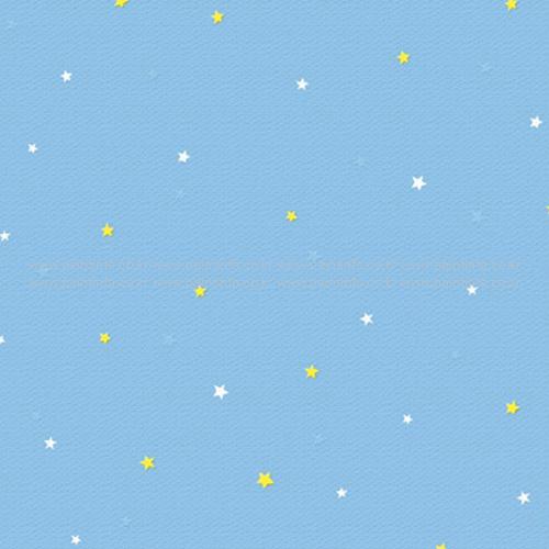 C45076-2 스타(블루)