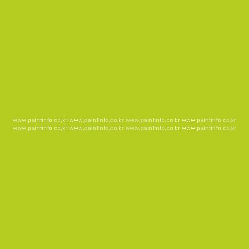 수입시트지E.U.12697 (라임)