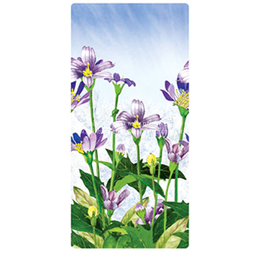 UN/NSL-17505 들꽃(2매)