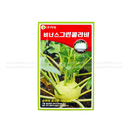 DN/비너스그린콜라비씨앗(100립)