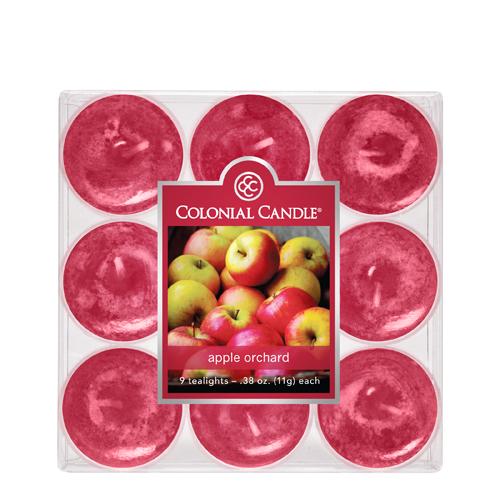 [콜로니얼 캔들1135] 티라이트(9pk)캔들 사과 과수원