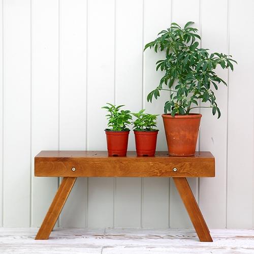 뉴질랜드소나무 키낮은화분대(natural)