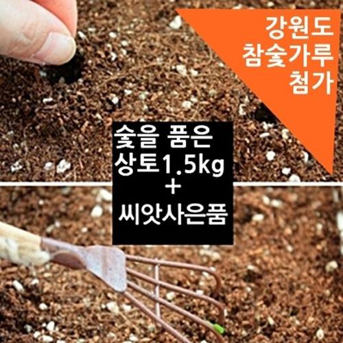 숯을 품은 흙1.5kg+씨앗사은품