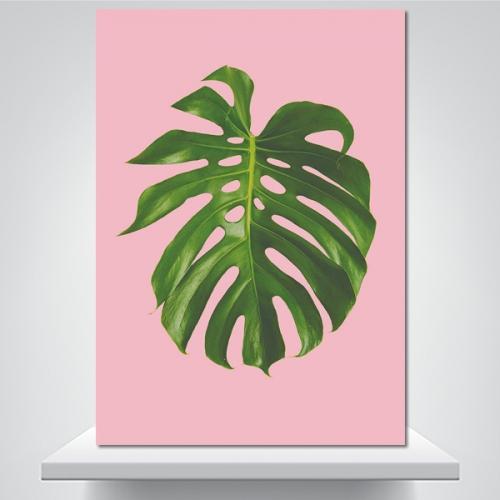 몬스테라 핑크 - 감성사진 폼보드 액자