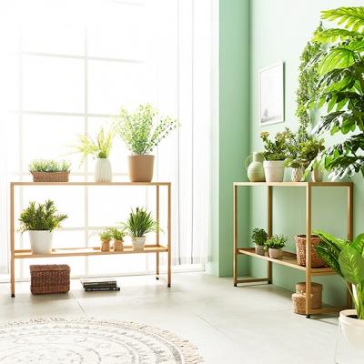 Shop/Mimimg/391_sm/item/20190621161806176686728653_thum_18464.jpg