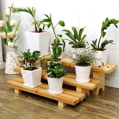 Shop/Mimimg/391_sm/item/29_thum_58398.jpg