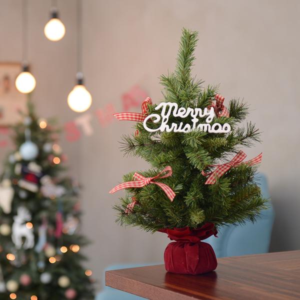 레드포켓 크리스마스트리