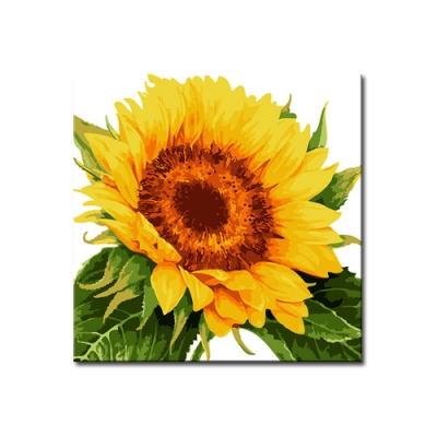 Shop/Mimimg/478_li/item/20191227144307340098154545_thum_45537.jpg