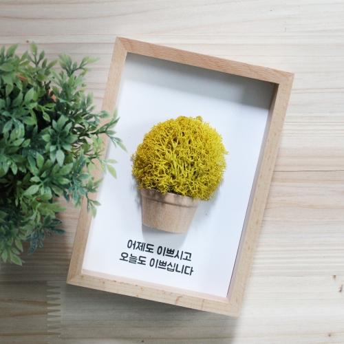 레인디어모스 6색 나무액자/예쁜천연이끼/공기정화식물