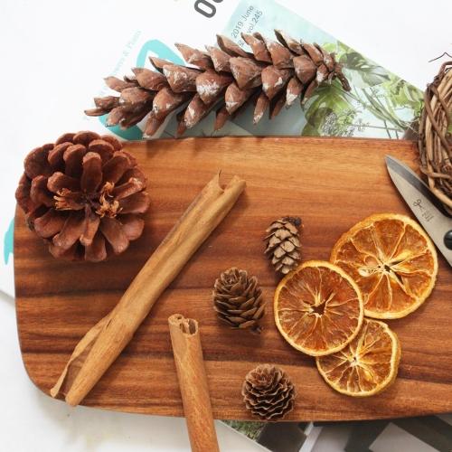 드라이 레몬, 솔방울, 시나몬-촬영소품, 석고 왁스타블렛용 크리스마스