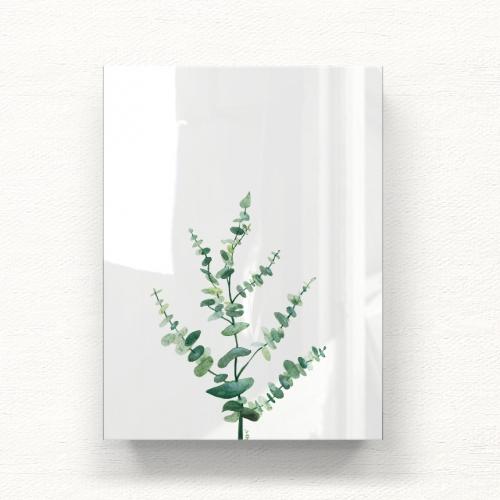 유칼립투스 _ 블랙잭 식물 아크릴 일러스트 그림액자by포포(336566)