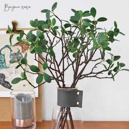 싱그러운 초록의 자포니카 잎 가지 - 인테리어조화