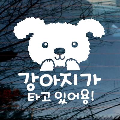 Shop/Mimimg/75_mo/item/20170510150451430301568331_thum_29327.jpg