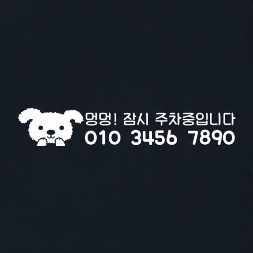 귀요미 강아지 전화번호