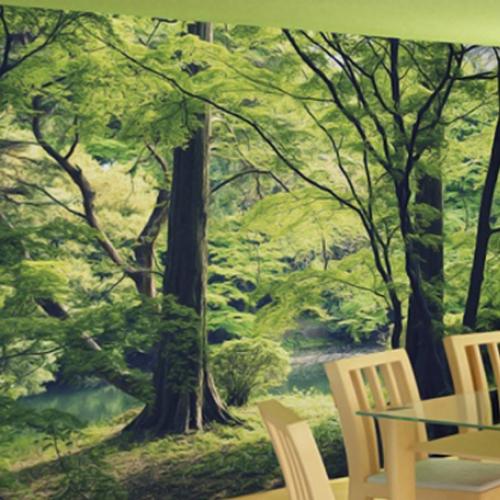 NW1100  - 숲3