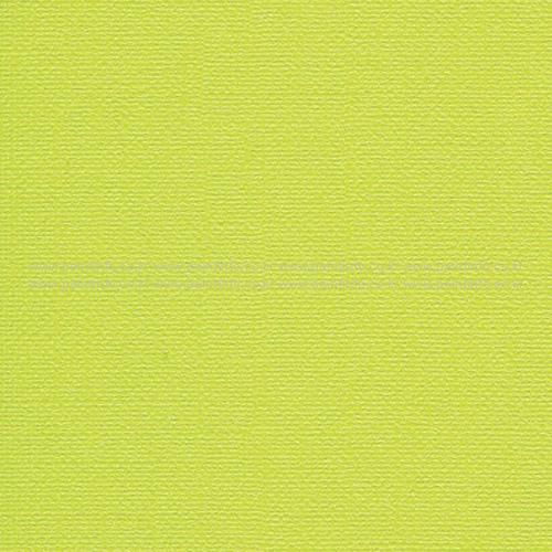 C60023-2 컬러풀(그린)