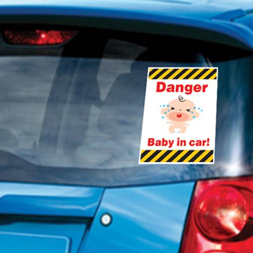 MCS-06 Danger Baby in car