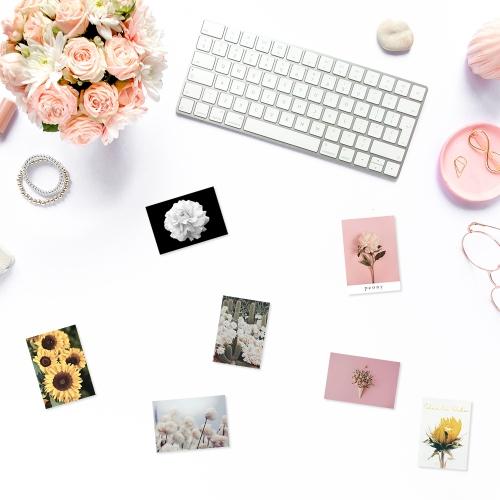 24종 로맨틱 꽃 사진세트