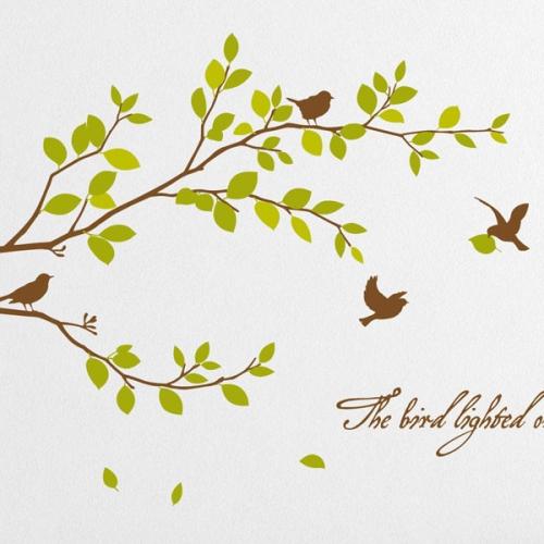 노래하는 새들의 아침