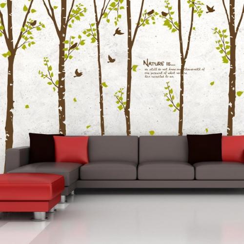 아침숲의 자작나무 03