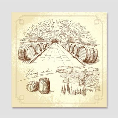CAS291-포도주 스케치2