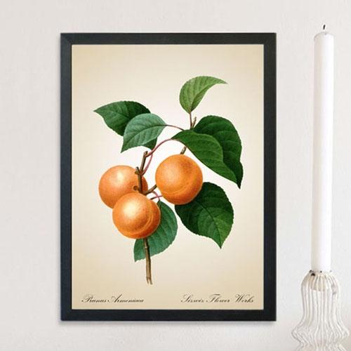 FA065 빈티지 플라워 살구나무 꽃 인테리어 액자
